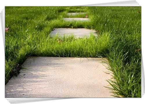 садова доріжка із бетону своїми руками