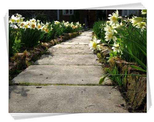 садова доріжка