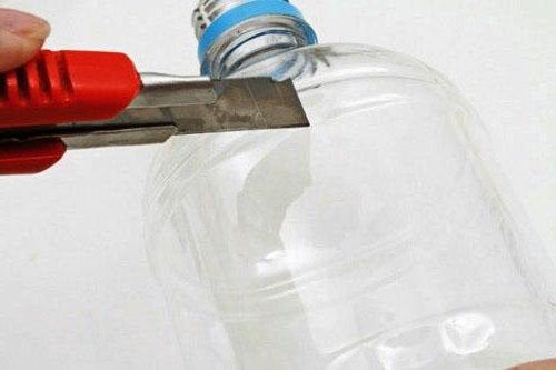 квіти з пластикової бутилки своїми руками